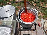 Making tomato juice
