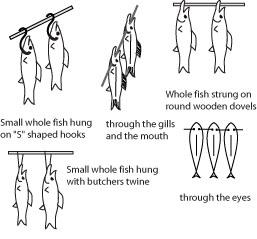 Hanging small fish.