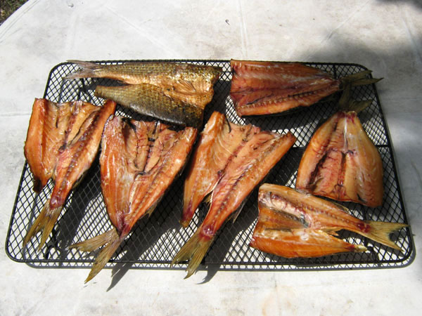Smoked mullet for Cold smoking fish