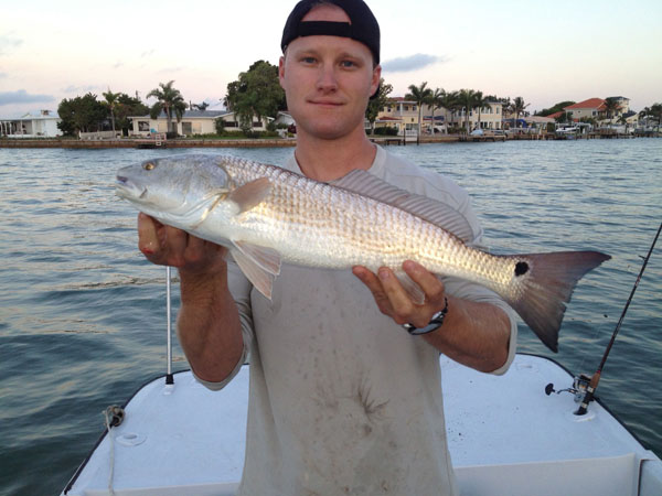 Smoked red drum for Red drum fishing