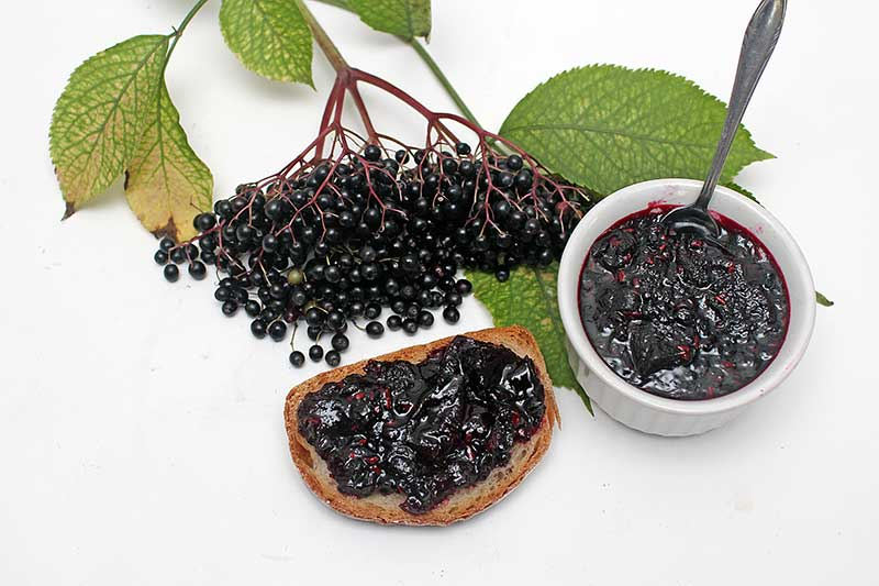 Elderberry-Apple Jam