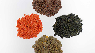 Lentils - green, red, brown and French.